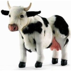 hansa-cow